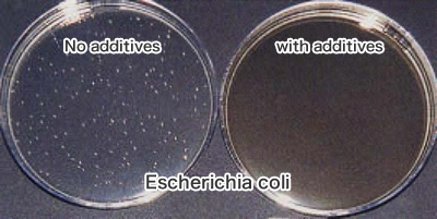 The results of antibacterial effect for the glazing used the additives<br /> (Film Contact Method)