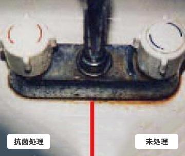 洗面台の排水口付近